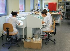 Centro Protesi INAIL, Vigorso di Budrio (Bologna) Bologna, Desk, Furniture, Home Decor, Writing Table, Desktop, Writing Desk, Home Furnishings, Interior Design