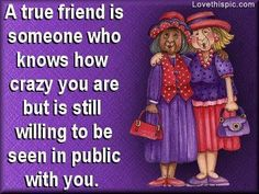 Discover and share Funny Friendship Quotes True. Explore our collection of motivational and famous quotes by authors you know and love. Life Quotes Love, Crazy Quotes, Funny Quotes, Quirky Quotes, Friend Friendship, Friendship Quotes, Funny Friendship, Friendship Messages, Friendship Pictures