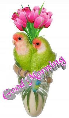 Morning Love Quotes, Good Morning Post, Cute Good Morning, Good Morning Picture, Good Morning Flowers, Morning Board, Beautiful Morning Pictures, Beautiful Gif, Good Morning Images Download