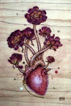 """Aeonium Heart"" Art Prints by Fay Helfer Arte Com Grey's Anatomy, Anatomy Art, Medical Art, Anatomical Heart, Art Plastique, Pyrography, Art Inspo, Cool Art, Art Drawings"