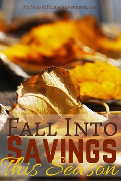 Fall Into Savings with this amazing money saving tips. Not only will you save money this fall but for the upcoming winter season.