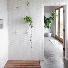 Open shower with recessed cedar/teak spa floor. Cement floor.