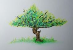 Just a tree #colors #tree #fabercastell #draw #art