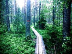 Trail running in Sweden: Sörmlandsleden (Stages 1-4) by François Tornier