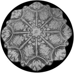 Round Doily In Knitted Lace - Designed By Herbert Niebling (Beyer Strickschrift 70641/VI) Knitted By Joanne Hubner PDF Content: English translation of instruction text, pattern in charted and writt...