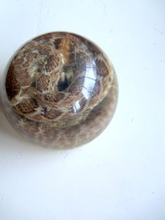 Vintage Round Rattlesnake Paperweight 1970s by WylieOwlVintage, $18.00