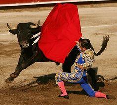 El matador era muy valiente porque él lucho un toro. El toro era muy valiente cuando lucho buen.