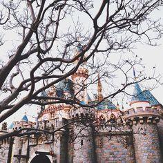 wait i miss the castle