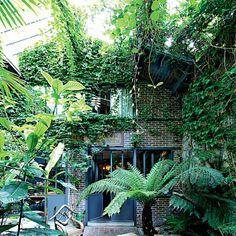 un patio au cœur de la maison, bouffée d'oxygène et de verdure