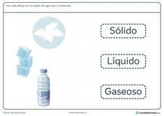 Ficha del agua y sus formas para primaria