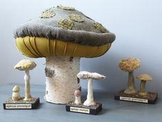 Mushroom Species Models. Circa 18th to 19th Centuries.
