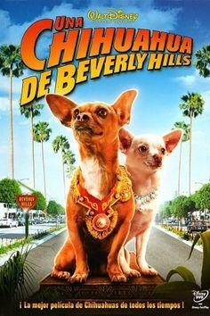 Una Chihuahua en Beverly Hills | Película Completa Online
