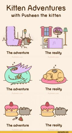 pusheen jokes / best cartoons and various comics translated into English, most funny comic strips online, gags, jokes / funny pictures & best jokes: comics, images, video, humor, gif animation - i lol'd