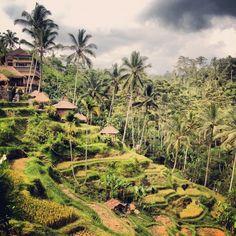 Indonesien Inselhopping