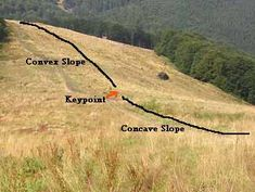 Illustration of keypoint on a hill - article is about earthworks for small permaculture farm