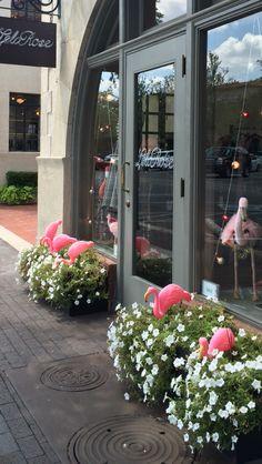 Summer Lela Rose window display in Highland Park Village, Dallas