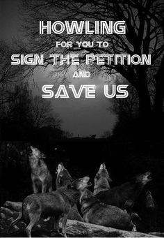 Wisconsin will pay hunters thousands to murder wolves via DNR Act 169 Section 2.B.1. http://www.causes.com/actions/1731642-wisconsin-will-pay-hunters-thousands-to-murder-wolves-via-dnr-act-169?reposter=787922_campaign=activity_mailer%2Fnew_repost_medium=email_source=causes# @SeaShepherd #defendconserveprotect