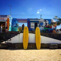 Surf shop in Guarja