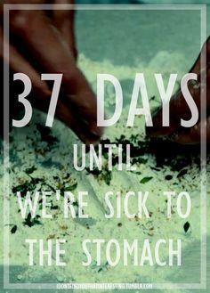 Hannibal Season 2 Countdown- 37 Days