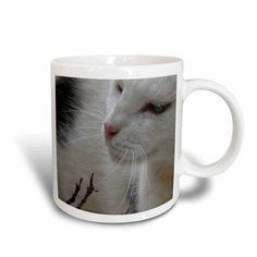 3dRose Cat Black and White Cat, Ceramic Mug, 11-ounce