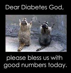 Type 1 Diabetes Memes — Congrats to Sara Thornton, this week's caption. Funny Animal Photos, Animal Pictures, Cute Pictures, Funny Animals, Cute Animals, Funny Images, Diabetes Memes, Cure Diabetes, Foto Gif