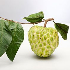 Sugar Apple - The fruit tastes like a pineapple-banana combo. Looking like an overgrown pinecone, the scaly, green skin is filled with an edible custardy pulp; just grab a spoon and scoop it out.