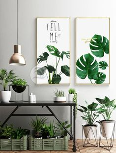 Nordic Ins Tropical Plants Leaves Young and Wild Concise Modern Artistic Wall Paintings Art Canvas Posters for Home Decorations Canvas Poster, Poster Prints, Canvas Art, Posters, Hanging Plants, Indoor Plants, Indoor Gardening, Tropical Plants, Garden Beds