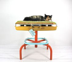 An upcycled suitcase becomes a nap-worthy perch for your favorite feline.
