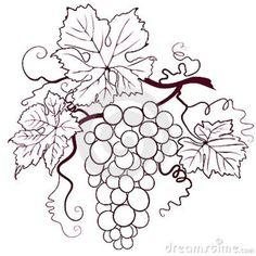 grapes-leaves-6844629.jpg (800×800)
