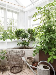 Made In Persbo: Växthusdrömmar Conservatory, Nature, Indoor, Rustic, Living Room, Garden, Flowers, How To Make, House