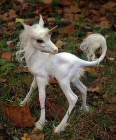 Cute unicorn with goat like features