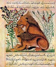 Some of Bukhtishus family members served as the personal physicians to Caliphs. Jurjis son of Bukht-Yishu was awarded 10,000 dinars by al-Mansur after attending to his malady in 765CE. It is even said that one of the members of this family was received as physician to Imam Sajjad (the 4th Shia Imam) during his illness in the events of Karbala