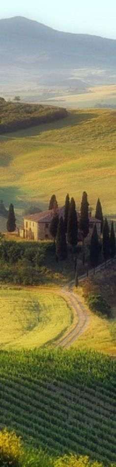 Tuscany - Toscana ~ Would love to paint this and put it on my wall...