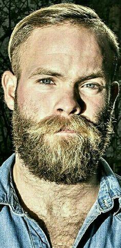 Handsome Bearded Men, Scruffy Men, Hairy Men, Face Men, Male Face, Beard Line, Beard Images, Male Pattern Baldness, Blonde Guys