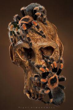 """Delirium"" featuring Brachypelma smithi spiders photographed by Igor Siwanowich   Dark Roast Blend"