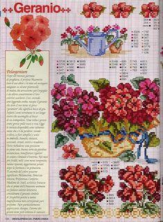 цветы пеларгония герань схема вышивки крестом