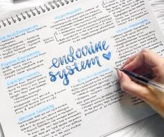 notes revision - notes revision ` notes revision layout ` notes revision ideas ` notes revision pretty ` notes revision study tips School Organization Notes, Study Organization, College Notes, School Notes, Revision Notes, Study Notes, Pretty Notes, Good Notes, Beautiful Notes