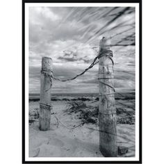 Plakát Nord & Co Solitude, 21 x 29 cm
