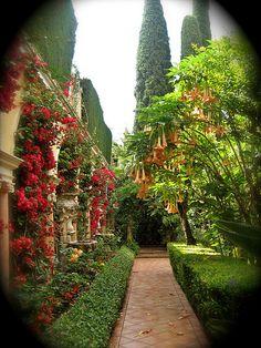 Spanish Garden #CourtYard #Landscape #Outdoor ༺༺ ❤ ℭƘ ༻༻