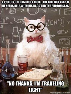 Chemistry Cat: Traveling light