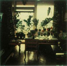 Andrei Tarkovski - Polaroid