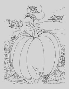 Here are the Wonderful Coloring Pumpkin Coloring Page. This post about Wonderful Coloring Pumpkin Coloring Page was posted under the Coloring Pages . Pumpkin Coloring Pages, Thanksgiving Coloring Pages, Fall Coloring Pages, Coloring For Kids, Printable Coloring Pages, Adult Coloring Pages, Coloring Sheets, Coloring Books, Thanksgiving Drawings