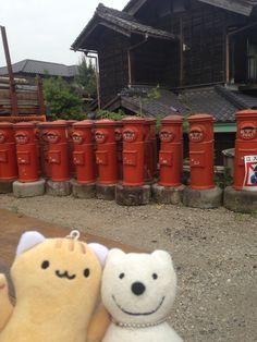 クマ散歩:越生に品行方正なクマ出没4 The Bear took a walk around Ogose!♪☆(^O^)/  #越生 #品行方正 #Bear