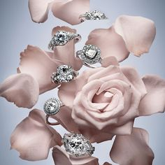 Blooming Love … Gorgeous  Engagement rings…<3