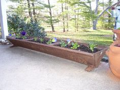 Old Pig Trough used as a Planter! - What a perfect design..... Polish it up and it's anyplace decor!