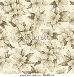 jasmine flower vintage - Google Search