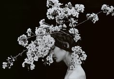 Beauty Other Worldly: Inspiration and Artwork of Sayaka Maruyama - Lioness Woman's Club