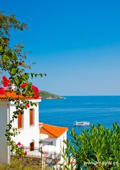 Beautiful view to the sea in Skiathos, Greece, by imagIN photography - Photo 132495631 / Beautiful Places To Visit, Beautiful Beaches, Skiathos Island, Romantic Honeymoon Destinations, Greece Holiday, Greece Islands, Santorini, Greece Travel, Places To Go