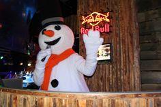 Welkom allemaal in mijn Snowparadijs! Daar gaan we dan! Laat je horen voor MC / DJ SNOWY!!