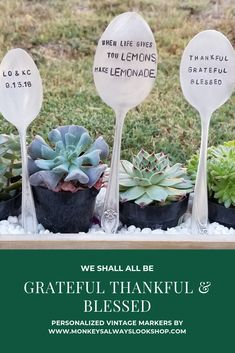 A personalized vintage marker for your garden or indoor plants. You can stamp you favorite word or quote. A great gifts for a new home or wedding event too! Creative Gifts, Great Gifts, Cute Garden Ideas, Garden Markers, Thankful And Blessed, Rustic Jewelry, Wedding Events, Wedding Ideas, Favorite Words